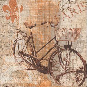 Guardanapo-Bicicleta-Vintage-2un-PDC827000---Toke-e-Crie-
