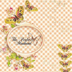 Papel-Scrapbook-com-Glitter-Momentos-com-Borboleta-LSCG-018---Litocart