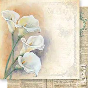 Papel-Scrapbook-Dupla-Face-Flor-Copo-de-Leite-SD-552---Litoarte