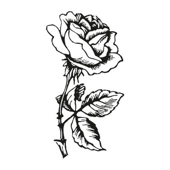 Carimbo-em-Borracha-Rosa-CLP-005---Litoarte