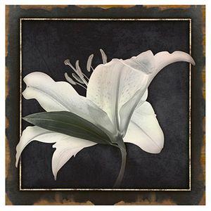 Papel-Decoupage-Arte-Francesa-Lirio-I-AFQ-362---Litoarte