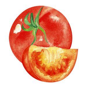 Aplique-Decoupage-8cm-Tomates-APM8-754---Litoarte