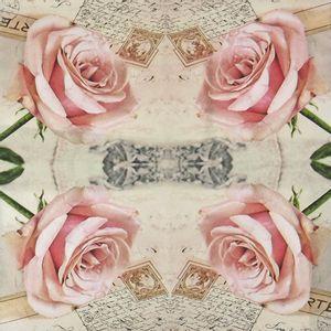 Guardanapo-Decoupage-Rosa-Romantica-2-unidades-GUA21704---Toke-e-Crie