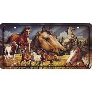 Placa-Decorativa-15x30cm-Cavalos-LPD-069---Litocart
