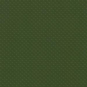 Papel-Scrapbook-Toke-e-Crie-PCAR504-Dupla-Face-305x305cm-Cardstock-Texturizado-Bolinhas-Verde-Mata
