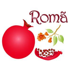 Stencil-Litoarte-STM-525-211X172cm-Pintura-Sobreposicao-Roma-By-Rose-Ferreira