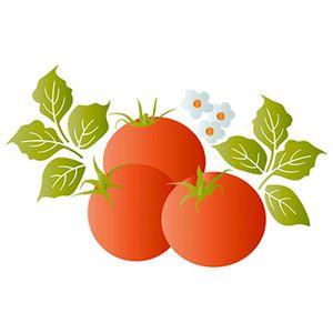 Stencil-Litoarte-ST1-012-344x21cm-Pintura-Sobreposicao-Tomates-Lili-Negrao