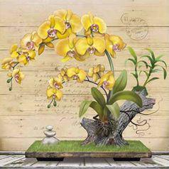 Papel-Decoupage-Arte-Francesa-Litoarte-AFQ-400-21x21cm-Orquidea-Amarela