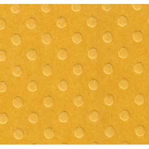 amarelo-mostarda_10000