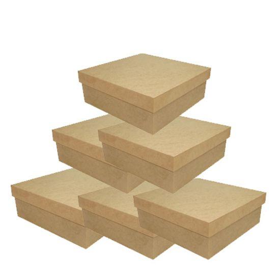 caixa-tampa-de-sapato-baixa-14x14-kit-com-50