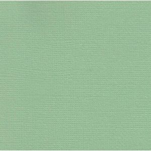 Papel-Scrapbook-Cardstock-Verde-Agua-PCAR407---Toke-e-Crie-