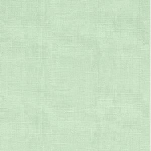 Papel-Scrapbook-Cardstock-Perolado-II-Verde-Gelo-PCAR435---Toke-e-Crie