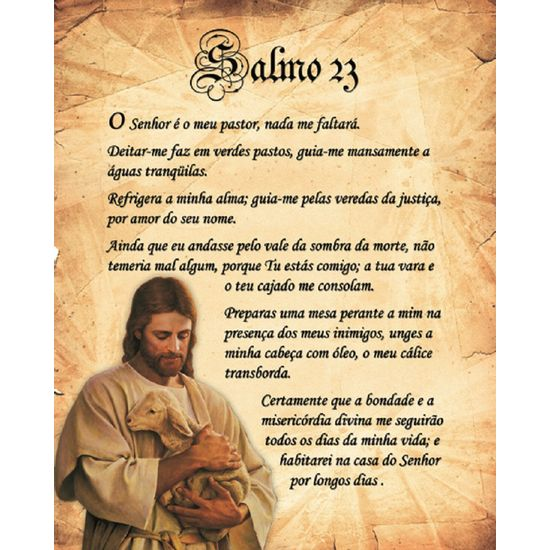 Placa-Madeira-Salmo-LPMC-08---Litocart