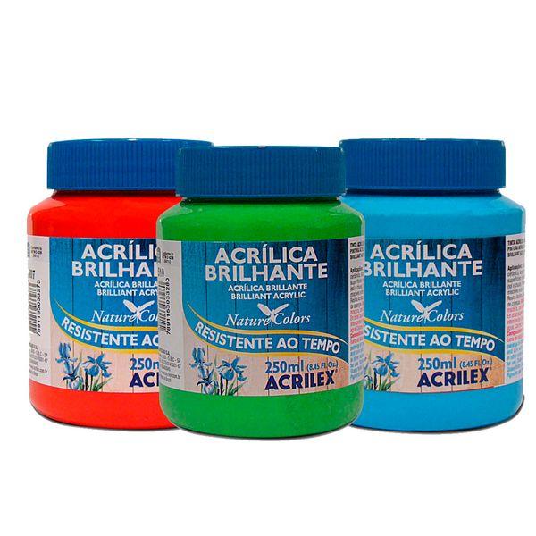 Tinta-Acrilica-Brilhante-Resistente-ao-tempo-Nature-Colors-250ml---Acrilex
