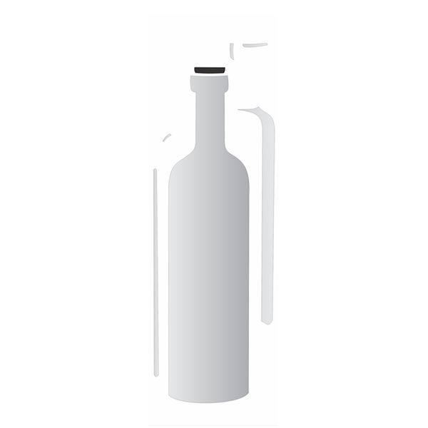 Estencil-para-Pintura-Simples-10x30-Garrafa-OPA1790---Opa