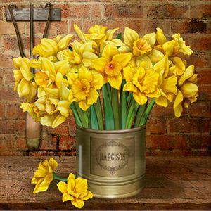 Papel-Decoupage-Arte-Francesa-Narcisos-Amarelos-na-Lata-AFQ-370---Litoarte