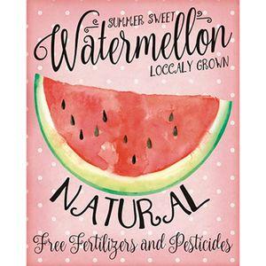Placa-Decorativa-Watermelon-24x19cm-DHPM-135---Litoarte