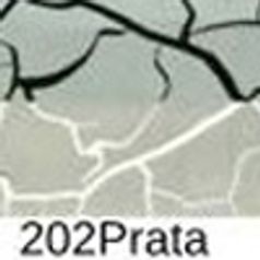 202---Prata