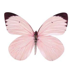 Aplique-Decoupage-8cm-Borboleta-Rosa-APM8-786---Litoarte