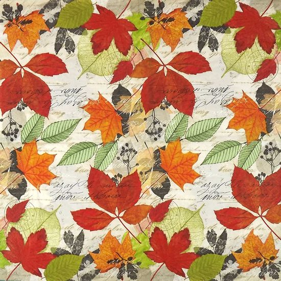 Guardanapo-Decoupage-Outono-Manuscrito-2-unidades-GUA200187---Toke-e-Crie