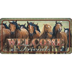 Placa-Decorativa-15x30cm-Welcome-Friends-LPD-068---Litocart