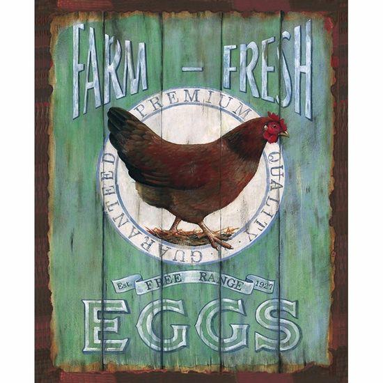 Placa-Decorativa-245x195cm-Farm-Fresh-Eggs-LPMC-069---Litocart