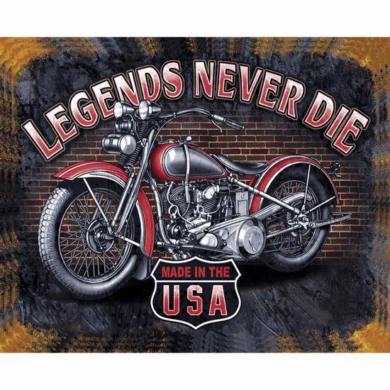 Placa-Decorativa-245x195cm-Legends-Never-Die-LPMC-077---Litocart