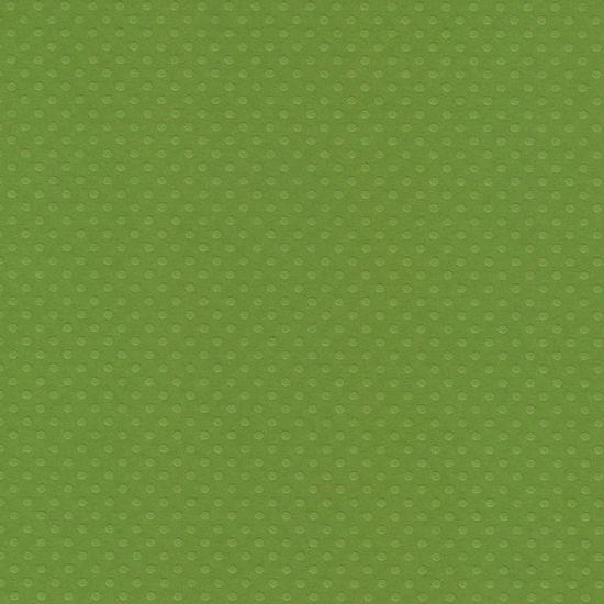 Papel-Scrapbook-Toke-e-Crie-PCAR503-Dupla-Face-305x305cm-Cardstock-Texturizado-Bolinhas-Verde-Relva