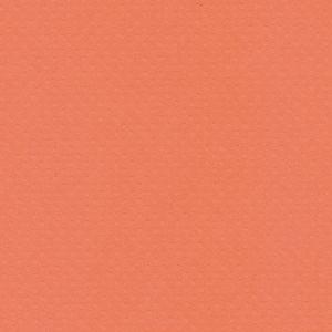 Papel-Scrapbook-Toke-e-Crie-PCAR493-Dupla-Face-305x305cm-Cardstock-Texturizado-Bolinhas-Coral