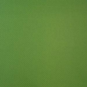 Papel-Scrapbook-Toke-e-Crie-PCAR491-Dupla-Face-305x305cm-Cardstock-Texturizado-Bolinhas-Verde-Capim