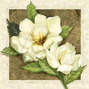Papel-Decoupage-Arte-Francesa-Litoarte-AFX-010-10x10cm-Flor-Branca