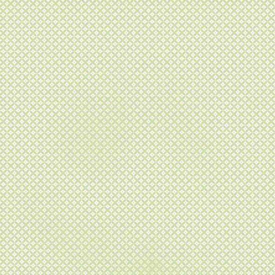 Papel-Scrapbook-Litocart-LSC-313-Simples-305x305cm-Abstrato-Verde-Claro-e-Branco