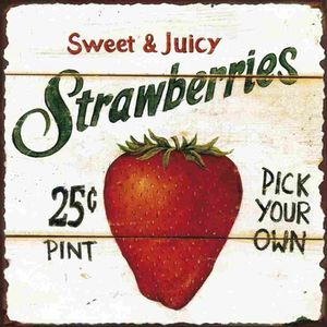 Placa-Decorativa-Litocart-LPQC-053-25x25cm-Strawberries