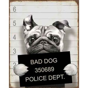 Placa-Decorativa-Litoarte-DHPM-319-24x19cm-Bad-Dog