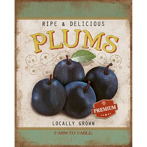 Placa-Decorativa-Litoarte-DHPML-004-24x19cm-Ripe---Delicious-Plums