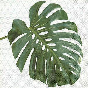 Guardanapo-Decoupage-Toke-e-Crie-GUA200503-2-unidades-Folha-Tropical