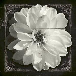 Papel-Decoupage-Adesiva-Litoarte-DAX-129-10x10cm-Flor-Branca
