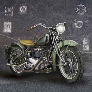 Papel-Decoupage-Arte-Francesa-Litoarte-AFQ-237-21x21cm-Moto-Verde