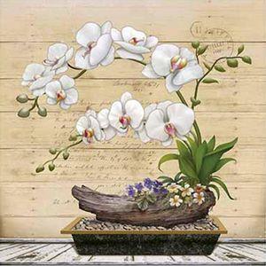 Papel-Decoupage-Arte-Francesa-Litoarte-AFQ-398-21x21cm-Orquidea-Branca