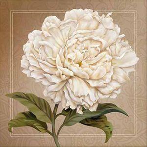 Papel-Decoupage-Arte-Francesa-Litoarte-AFQ-413-21x21cm-Peonia-com-Fundo-Marrom