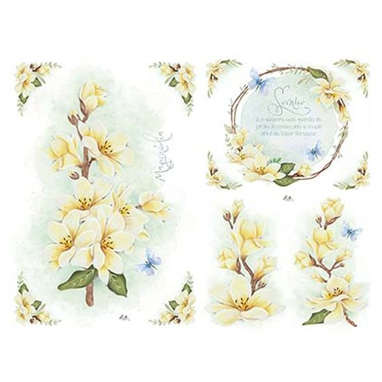 Papel-Decoupage-Litoarte-SPL1-004-473x338cm-Magnolias-by-Lili-Negrao