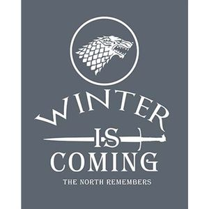 Placa-Decorativa-em-MDF-Litoarte-DHPM-409-24x19cm-Winter-Is-Coming