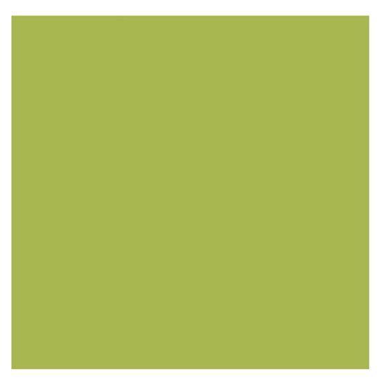 Papel-Scrapbook-Litoarte-305x305cm-SS-057-Verde