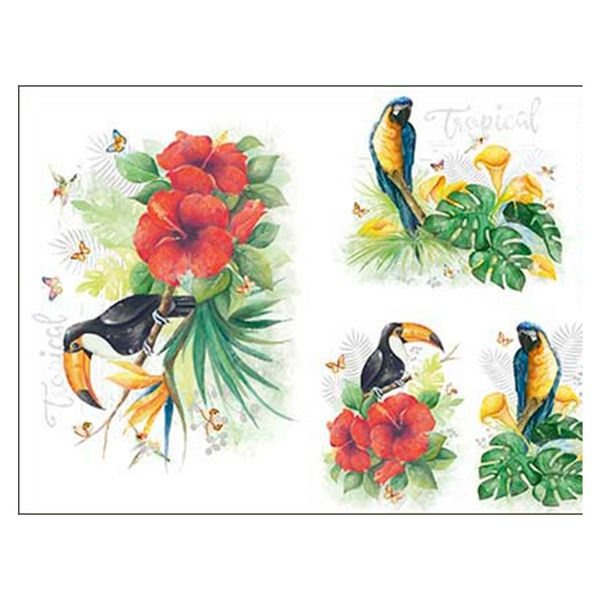 Slim-Paper-Decoupage-Litoarte-473x338-SPL-006-Tropical-Tucano-e-Arara