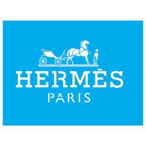Stencil-Litocart-20x15-LSM-134-Hermes-Paris
