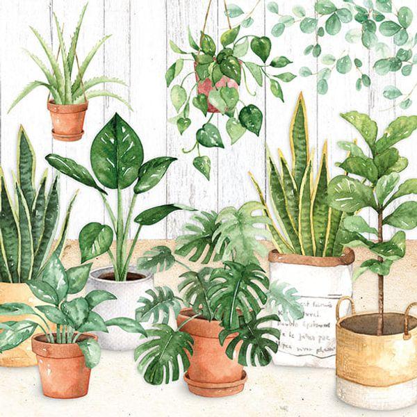 Guardanapo-de-Papel-para-Decoupage-Ambiente-Luxury-13313260-2-unidades-Vasos-e-Folhas