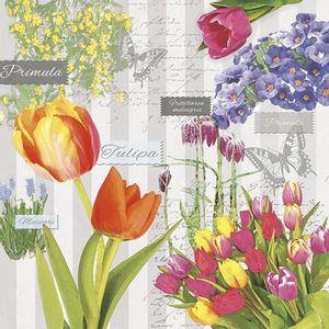 Guardanapo-Decoupage-Ambiente-Luxury-SPRING-FLOWERING-GREY-13312716-2-unidades-Primavera