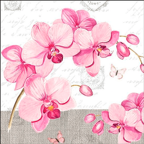 Pacote-Guardanapo-Decoupage-Ambiente-Luxury-ORCHIDS-WHIT-LOVE-13309955-20-unidades-Orquideas