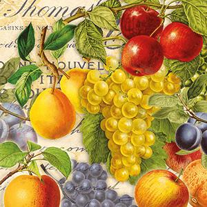 Guardanapo-Decoupage-Ambiente-Autumn-Fruit-13314480-2-unidades