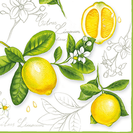 Guardanapo-Decoupage-Ambiente-Citrus-Limonum-13306290-2-unidades